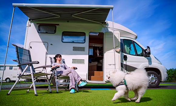 Doggie motorhome holiday