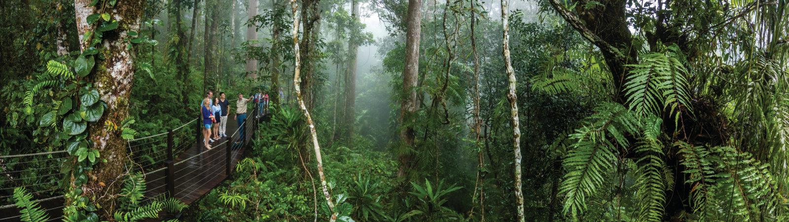 Cairns & Far North Queensland