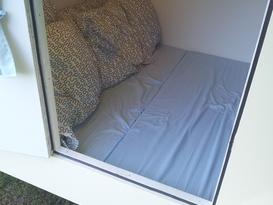 Bed Bug - Image #5