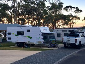 VanGo's 'Gabby Gecko' - Perfect for Families - Image #5