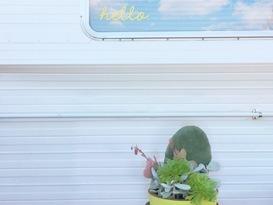 Sunny the Caravan - Image #6