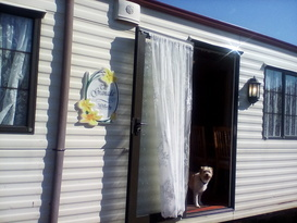 Lovely holiday caravan for hire - Image #5